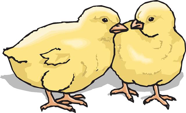 18 au 23 octobre 2021 – La vie à la ferme (6 à 12 ans)